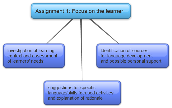 CELTA Focus on the learner
